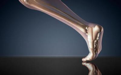 Le azioni muscolari reversibili