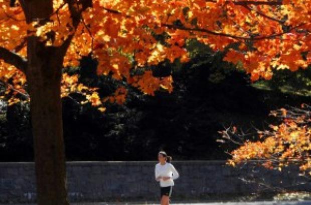 Sport, il parco batte la palestra. L'aria aperta allevia lo stress